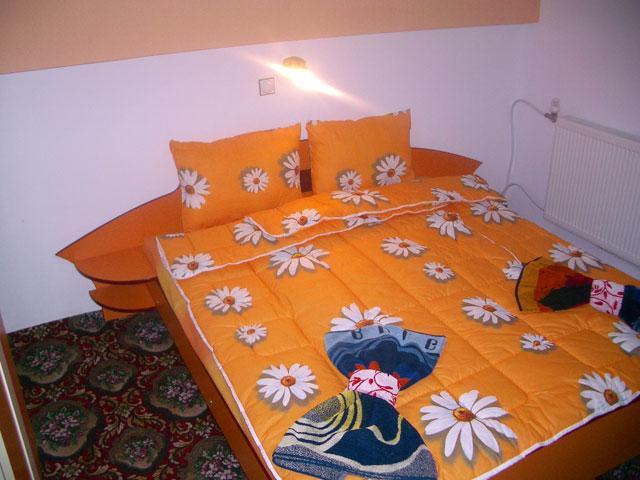 Хотел Бор - снимка 10