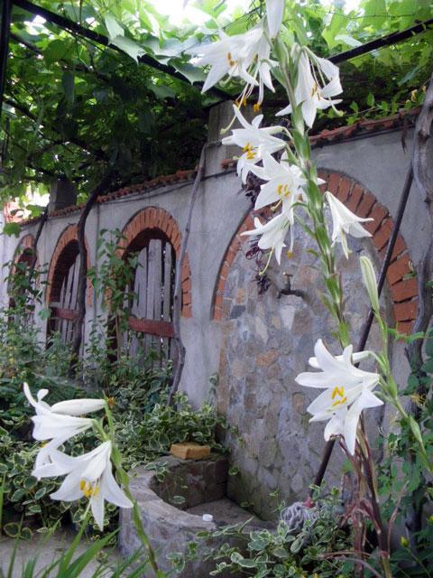 Къща Равадина - снимка 8