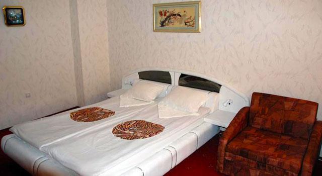 Къща за гости Русина - снимка 15