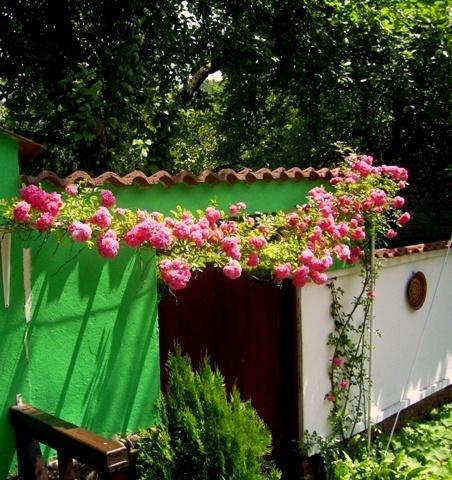 Къща Вила Colour - снимка 15