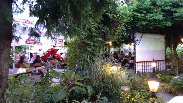 Ресторант Лоза - снимка 21