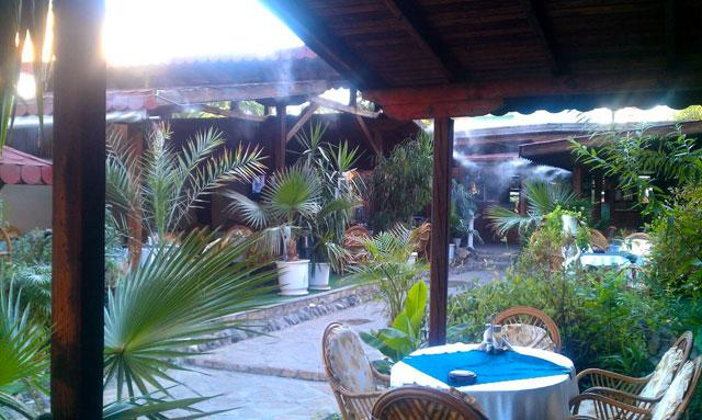 Ресторант Градина - снимка 13