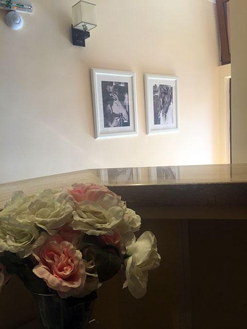 Семеен хотел Ред Хаус - снимка 6
