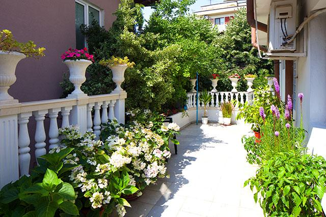 Семеен хотел Флора - снимка 17