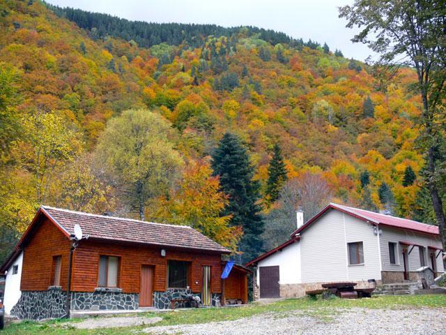 Къща за гости Горхим - снимка 27