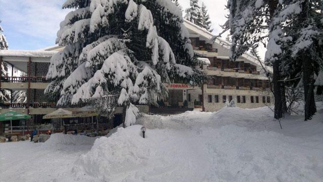 Хотел Тофана - снимка 2
