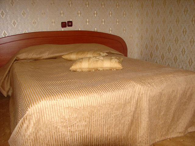 Хотел Бреза - снимка 24