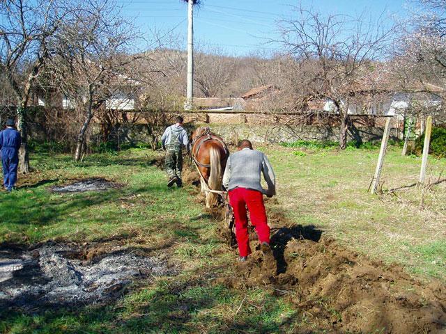 Еко селище Радост - снимка 26