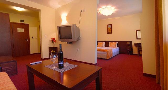 Хотел Балкан - снимка 14