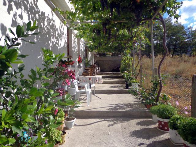 Къща за гости Боряна - снимка 12