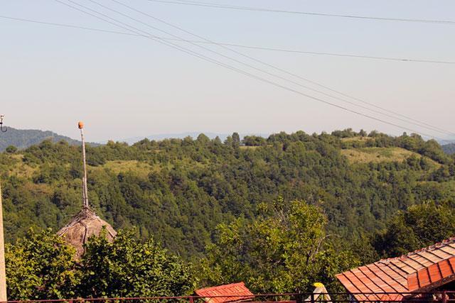 Къща за гости Даскалов - снимка 10