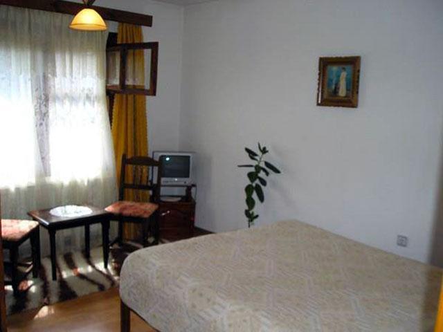 Къща за гости Ненчова къща - снимка 28