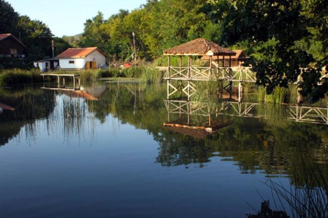 Хотел-ресторант Рибарникъ - снимка 4