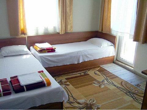 Самостоятелни стаи Хрис - снимка 8